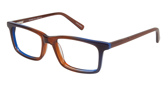 A&A Optical Fremont St LE Brown/Blue