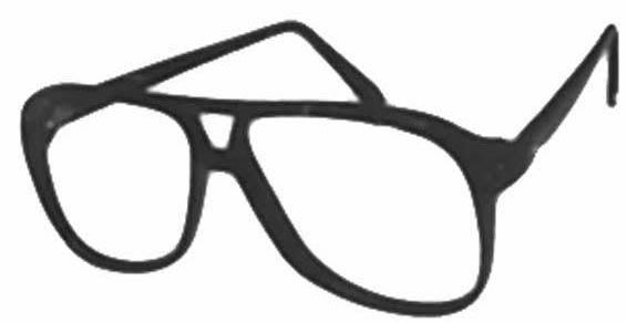 Modern Optical Roger