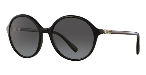 Coach HC8188B Sunglasses
