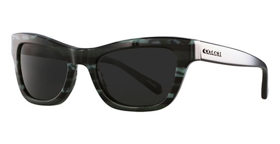 Coach HC8223 Sunglasses