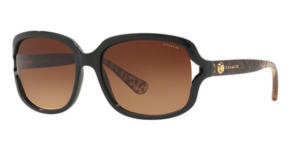 Coach HC8169 Sunglasses