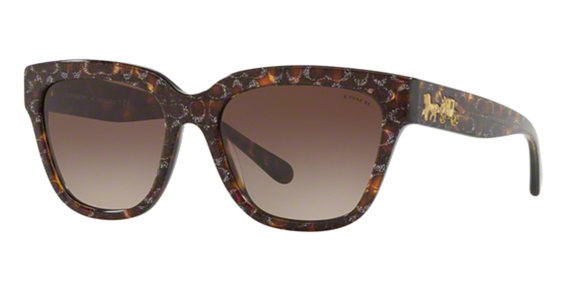 Coach HC8262 Sunglasses