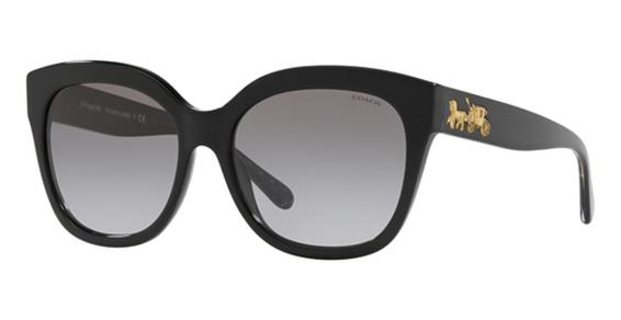 Coach HC8264F Sunglasses