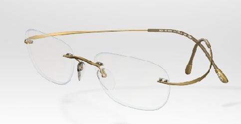 Silhouette 6073 Eyeglasses