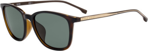 Hugo BOSS 1063/F/S Sunglasses