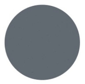 Custom Lens Colors Grey Tint Accessories