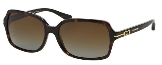 Coach HC8116 Sunglasses
