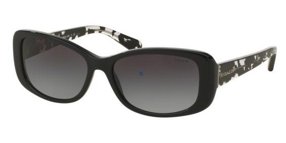 Coach HC8168 Sunglasses