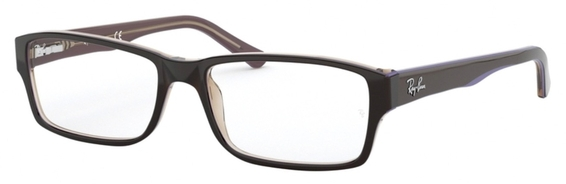 Ray Ban Glasses RX5169