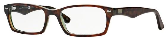Ray Ban Glasses RX5206