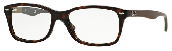 Ray Ban Glasses RX5228 Black