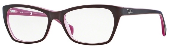 Ray Ban Glasses RX5298