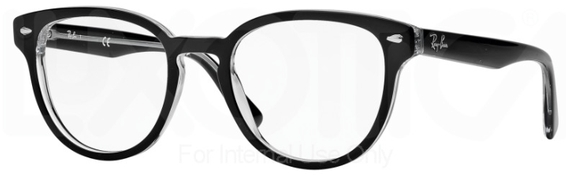 Ray Ban Glasses RX5311
