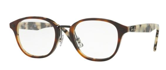 Ray Ban Glasses RX5355