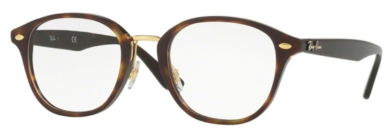 Ray Ban Glasses RX5355F
