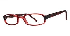 Modern Optical On Track Burgundy/Tortoise