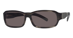 Calvin Klein CK776S Black Horn W/Grey Lenses