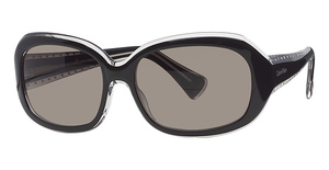 Calvin Klein CK797S Black Ochre W/Brown Gradi