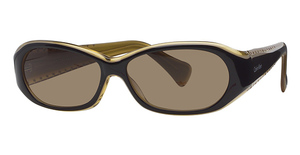 Calvin Klein CK798S Black Ochre W/Brown Gradi