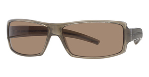 Calvin Klein CK687S Quartz/Dp Brown Gr. Lense