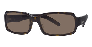 Calvin Klein CK773S Collection Tortoise W/Brn