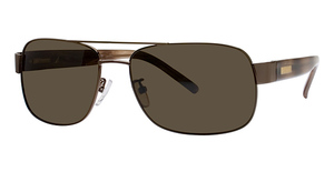 Nautica Destination  Polarized Shiny Brown