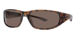Columbia Borrego Sunglasses