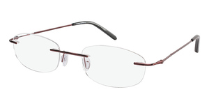 Genesis 2029 Glasses