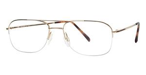 Aristar AR 6764 Glasses