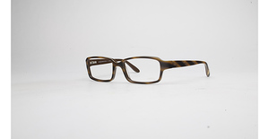 Brooks Brothers BB 697 Brown/Taupe