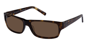 Ted Baker B462- Willy Nilly Sunglasses
