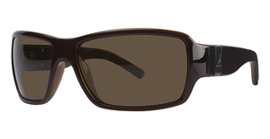 Nautica N6112S POL Chocolate Tan