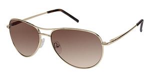 Ted Baker B471-Carter Sunglasses