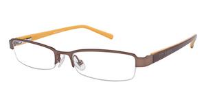 Ted Baker B909 Glasses