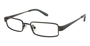 Ted Baker B900 Glasses
