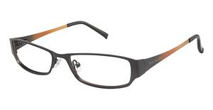 Ted Baker B173 Glasses
