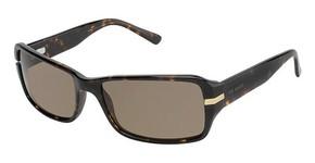 Ted Baker B476 Reaction Sunglasses