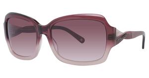 BCBG Max Azria Silk Sunglasses
