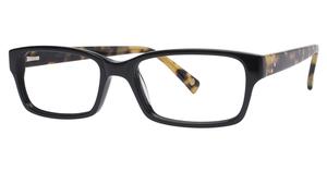 Avalon Eyewear DV 06 BLACK/TOKYO TORT
