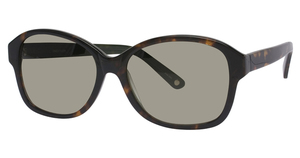 Avalon Eyewear 5506 Sunglasses