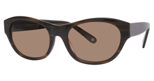 Avalon Eyewear 5504 Brown