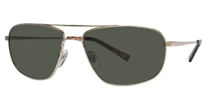 Avalon Eyewear 5501 Gold