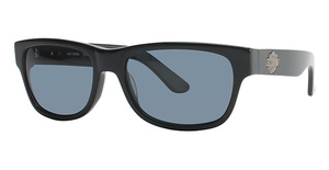 Harley Davidson HDX 803 Sunglasses