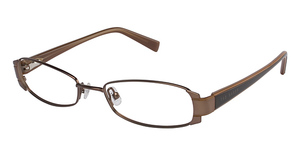 Ted Baker B184 Brown/Light Brown