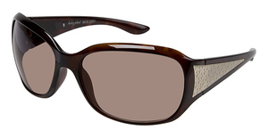 Baby Phat 2051 Sunglasses