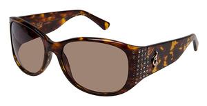 Baby Phat 2053 Sunglasses