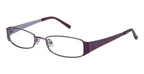 Ted Baker B201 Glasses
