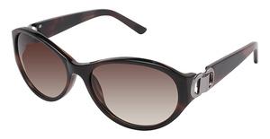 Ted Baker B489 Ford Sunglasses
