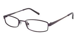Ted Baker B914 Eyeglasses