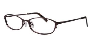 ECO 1062 Glasses